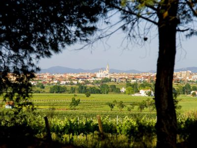 Vilafranca del Penedès